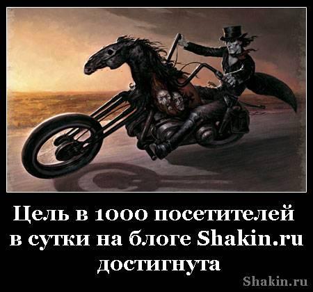 Цель в 1000 посетителей в сутки на блоге Shakin.ru достигнута