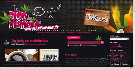 www.leflaneur.fr