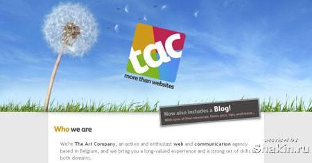 www.theartcompany.org