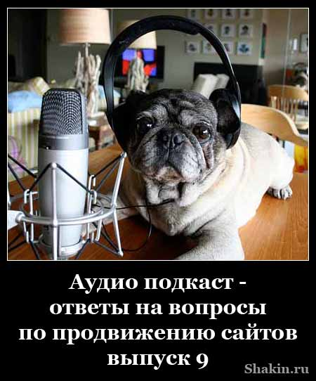 Аудио подкаст - ответы на вопросы по продвижению сайтов - выпуск 9