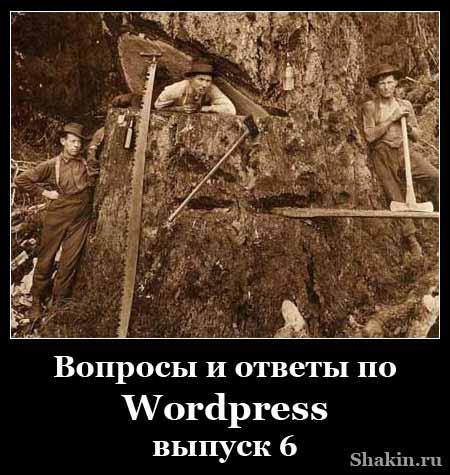 Вопросы и ответы по WordPress - выпуск 6