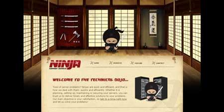 Ninja-support.com - со времен первых видеофильмов я люблю все, что связано с ниндзями
