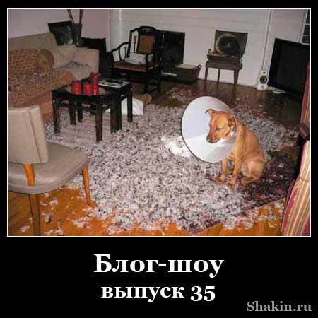 Блог-шоу - выпуск 35