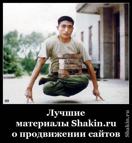 Лучшие материалы Shakin.ru о продвижении сайтов