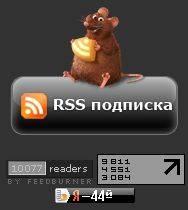 10000 RSS подписчиков на Shakin.ru