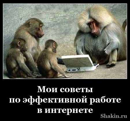 Мои советы по эффективной работе в интернете