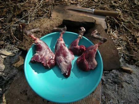 Мясо ондатры