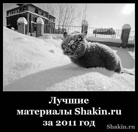 Лучшие материалы Shakin.ru за 2011 год