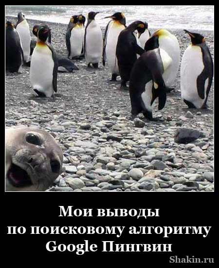 Мои выводы по поисковому алгоритму Google Пингвин