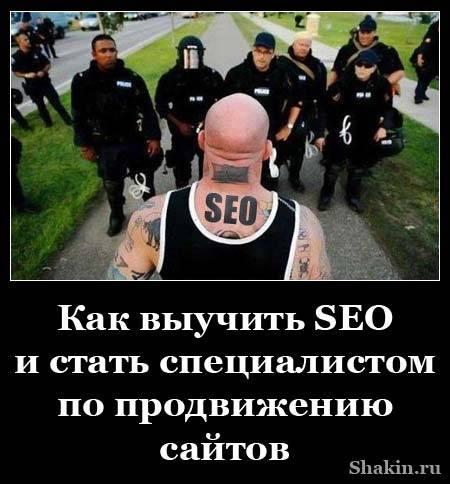 Как выучить SEO и стать специалистом по продвижению сайтов