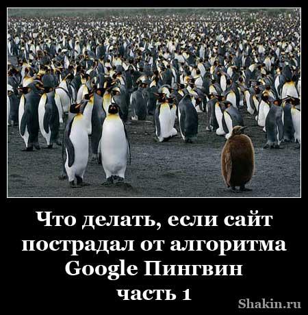 Что делать, если сайт пострадал от алгоритма Google Пингвин - часть 1