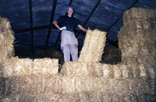 Я складываю сено