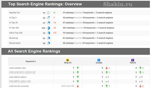 скриншот одного из отчетов Rank Tracker