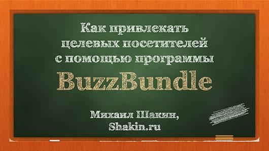 Как привлекать целевых посетителей с помощью программы BuzzBundle