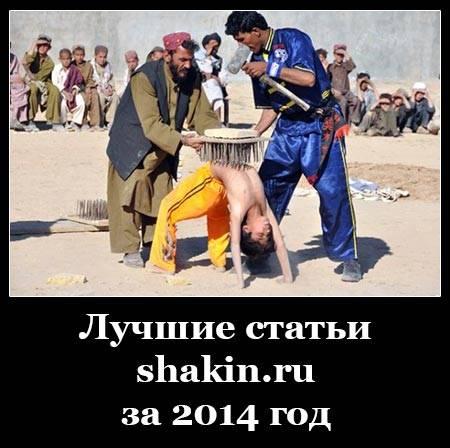 Лучшие статьи shakin.ru за 2014 год