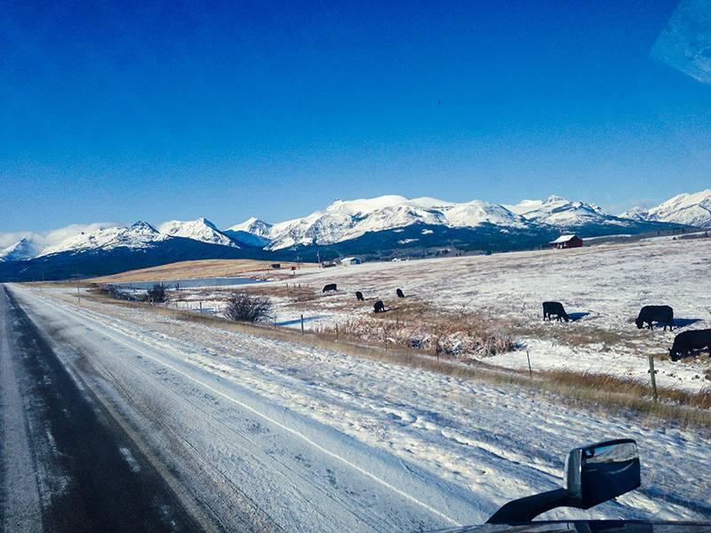 Трасса в штате Монтана