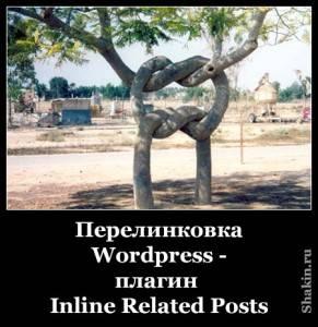 Внутренняя перелинковка Wordpress - плагин Inline Related Posts